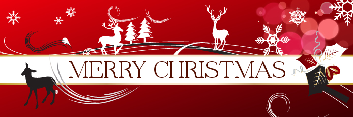 Christmas Banner.Merry Christmas Banner 1 Business Growth Centre